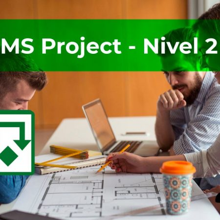 MS Project 2019 – Nivel 2